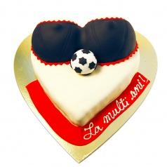 Tort Sani