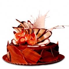 Tort Torino