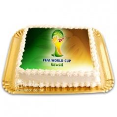 Tort Cupa Mondiala 2014