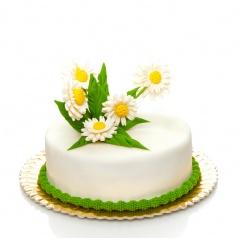 Tort Margo